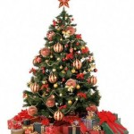 What is the origin of the Christmas tree?