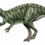 Suchomimus Facts